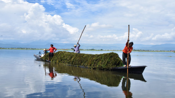 Working Boat of Inle Lake